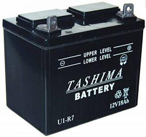 Batteries tondeuses autoportées, comment choisir les meilleurs modèles TOP 6 image 0 produit