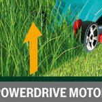 Moteur électrique tondeuse à gazon : top 5 TOP 5 image 3 produit